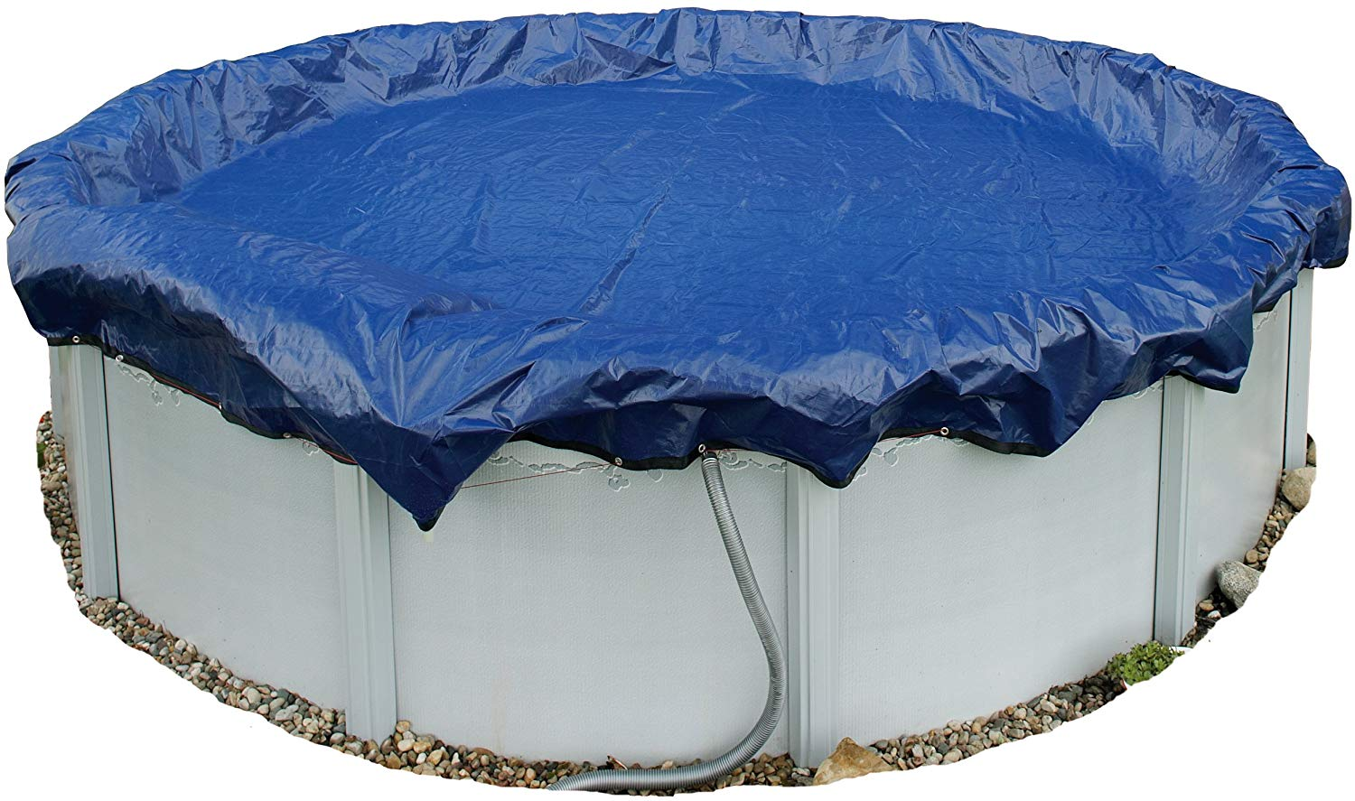 Blue Wave Gold 24-ft above ground cover