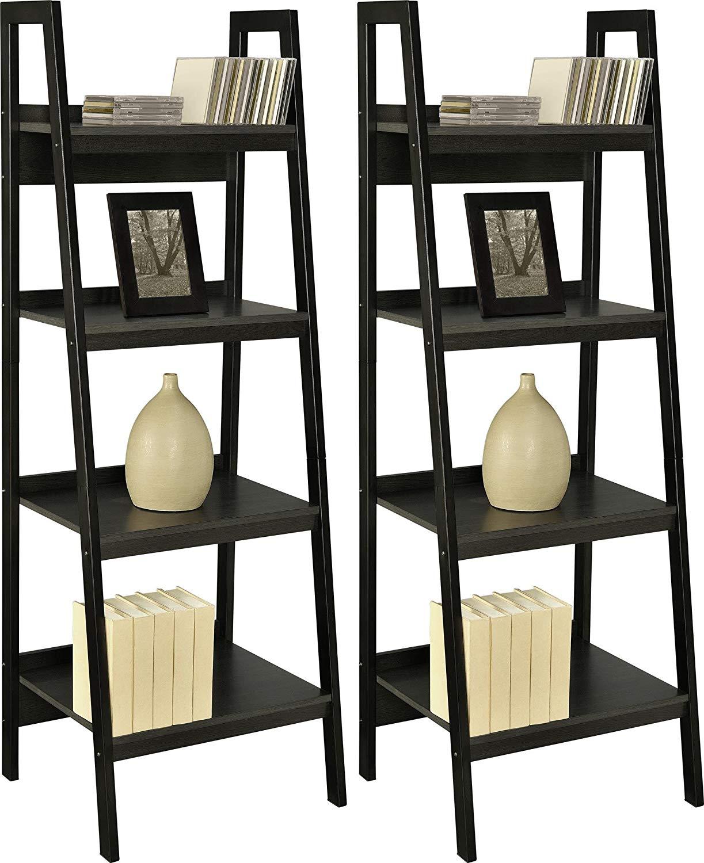 Ameriwood Home Lawrence Shelf Ladder