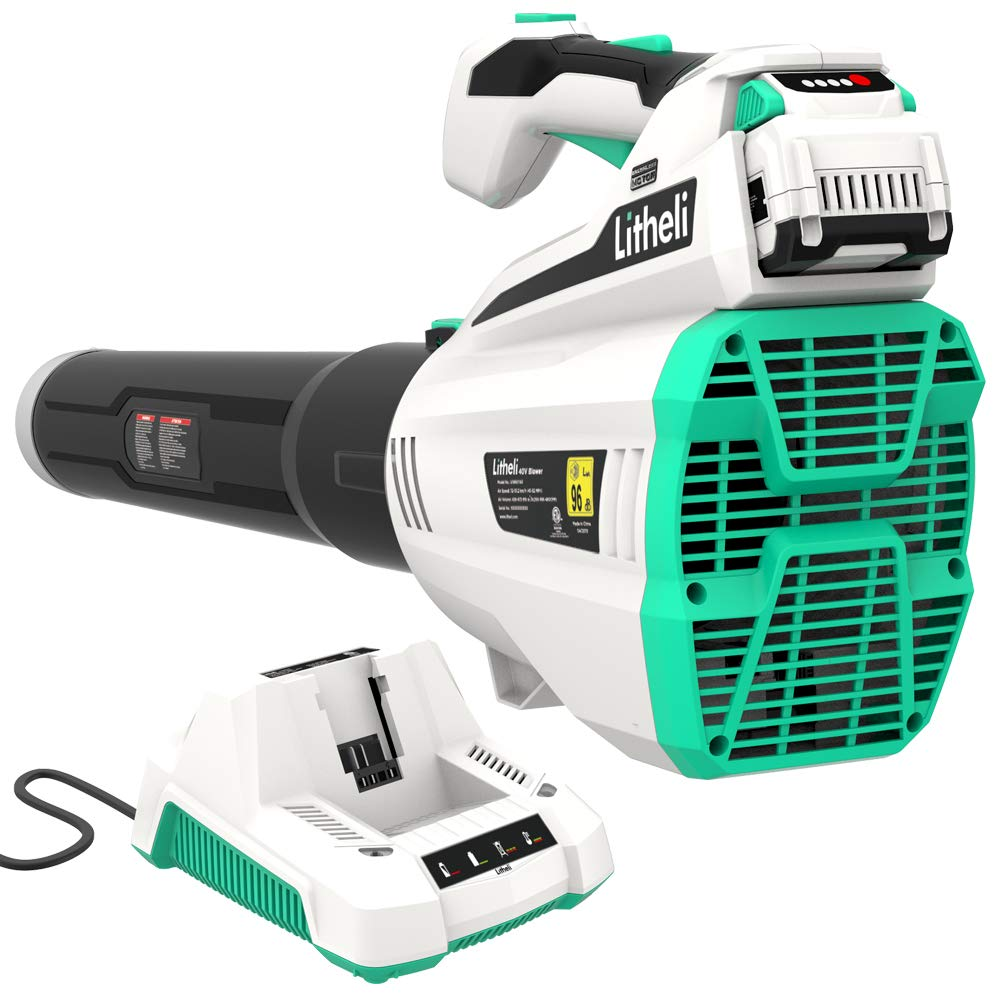Lithely Leaf Blower with Brush less Motor