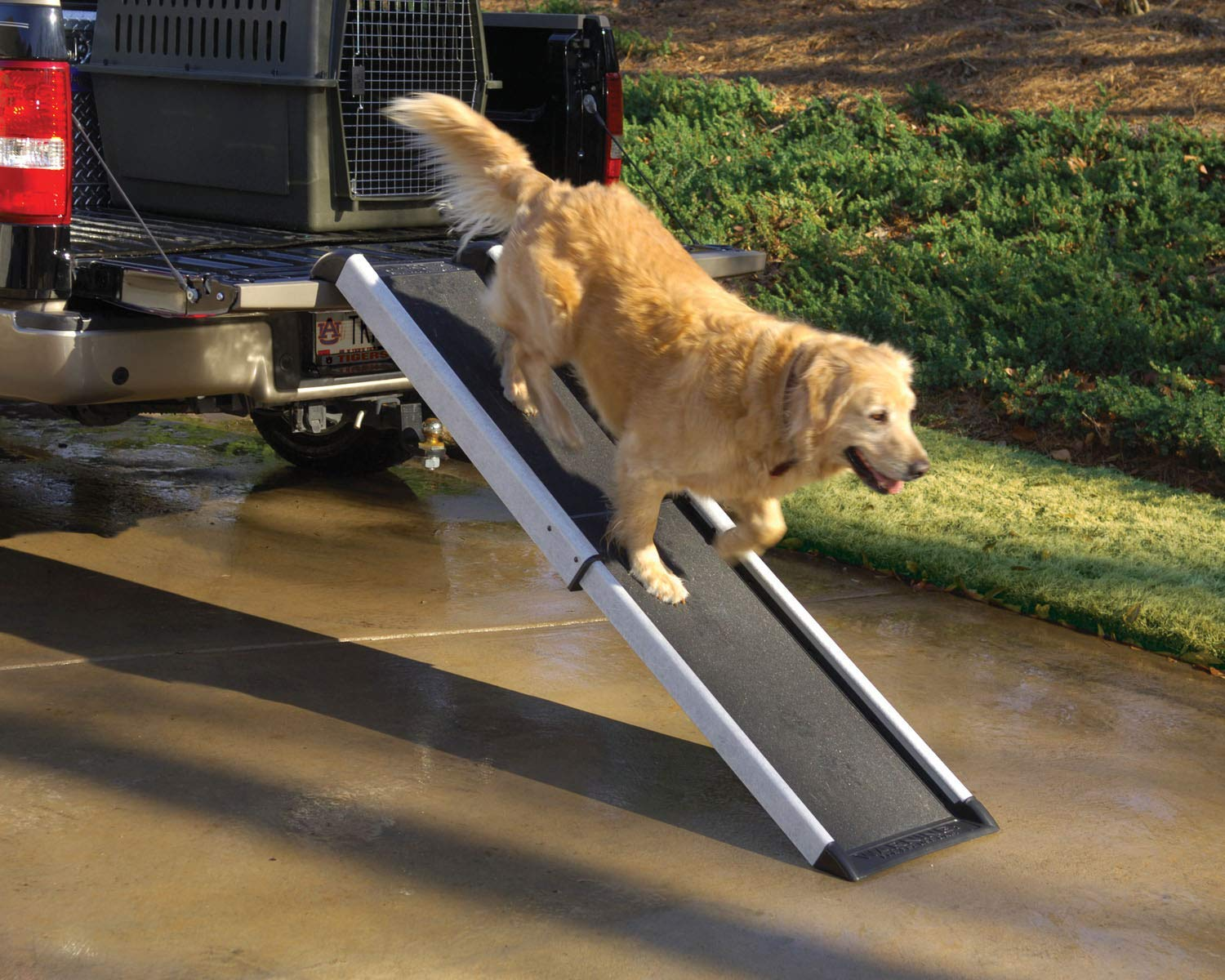 PetSafe Happy Ride Extendable Dog Ramp