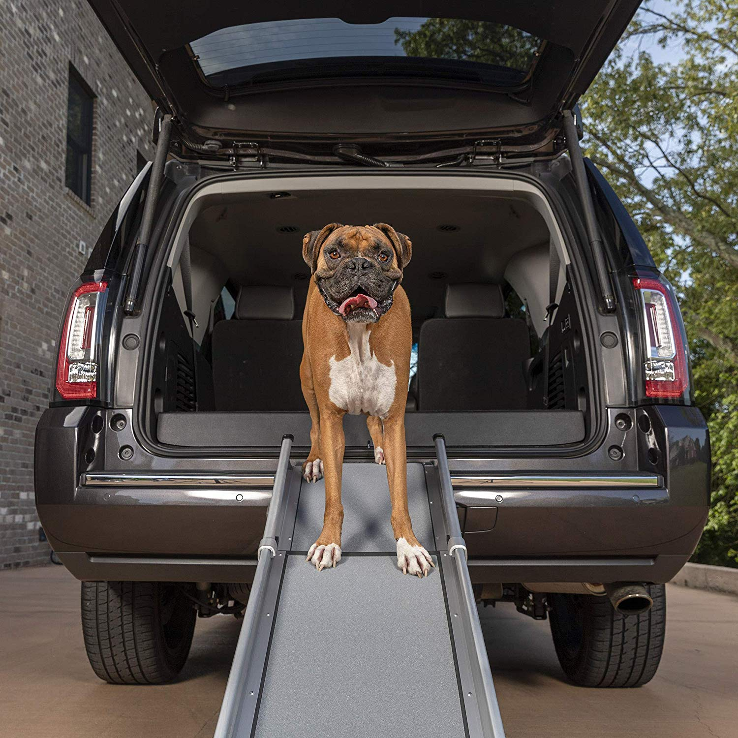PetSafe Solvit Deluxe Telescoping Pet Ramp or Carrying Case
