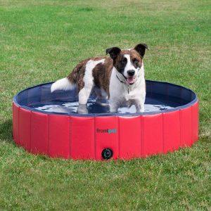 FrontPet Dog Pool