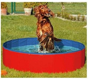 N&M Products Dog Pool