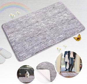 Indoor Doormat with Non-Slip Rubber Backing