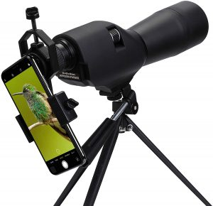 Pinty 20-60x60 Waterproof Straight Spotting Scope with Tripod