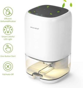AUZKIN Small Dehumidifier