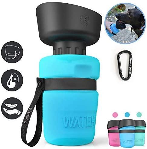 Lesotc Water Bottle
